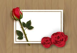 red rose with picture frame