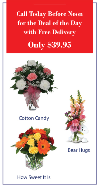 Call today before noon for the Deal of the Day with Free Delivery | Only $39.95